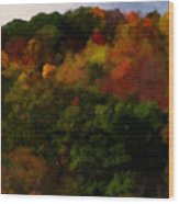 Hint Of Fall Color Painting Wood Print