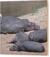 Hippo Heaven Wood Print