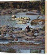 Hippo Raft Wood Print