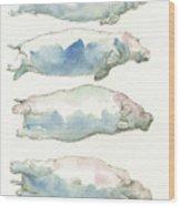 Hippo swimming study Wood Print