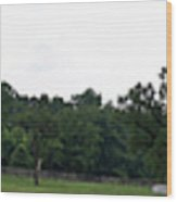 Historic Appomattox Panorama  Wood Print by Teresa Mucha