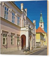 Historic Architecture Of Town Bjelovar Wood Print