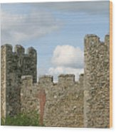 Historic Castle Wood Print