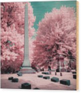 Historic Cemetery In Infrared Wood Print