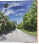 Historic Jungle Trail Vero Bch Fl II Wood Print