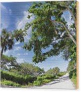 Historic Jungle Trail Vero Bch Fl I Wood Print