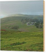 Historic Pierce Point Ranch In Point Reyes Wood Print