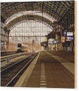 Historic Railway Station In Haarlem The Netherland Wood Print