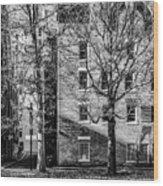 Historic Rochester Wood Print