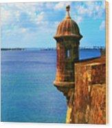 Historic San Juan Fort Wood Print