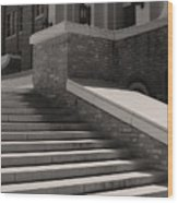 Historic Steps Little Rock Central High School Wood Print by Brian M Lumley