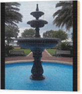 Historical Saint Marys Water Fountain Wood Print