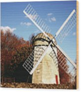 Historical Windmill Wood Print