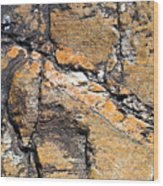 History Of Earth 4 Wood Print