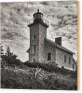 History's View Wood Print