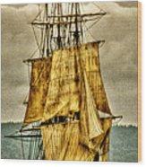Hms Bounty Wood Print by David Patterson