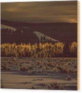 Hoar Frost In Dawn's Light Wood Print