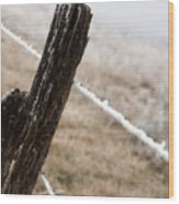 Hoarfrost And Fence Wood Print