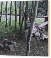 Hobo Camp In Animas Canyon Wood Print