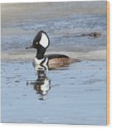 Hodded Merganser With Reflection Wood Print