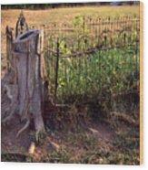 Hogeye Grave Site Wood Print
