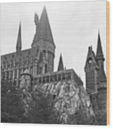 Hogwarts Castle Black And White Wood Print