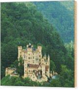 Hohenschwangau Castle 1 Wood Print