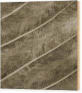 Hojita Wood Print