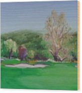 Hole12 Ohlone Ridge Wood Print