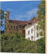 Holenschwangau Castle 3 Wood Print