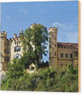 Holenschwangau Castle 4 Wood Print