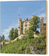 Holenschwangau Castle 5 Wood Print
