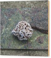 Holey Stone 2 Wood Print