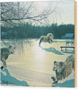 Holidays On Ice Wood Print