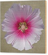 Hollyhock On Linen 2 Wood Print