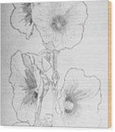 Hollyhocks Wood Print