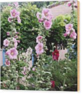 Hollyhocks Taos New Mexico Wood Print