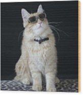 Hollywood Cat Wood Print