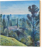 Hollywood Hills California Usa 1997  Wood Print