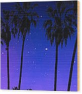 Hollywood Palm Tree Abstract Wood Print