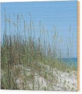 Holmes Beach Florida Wood Print