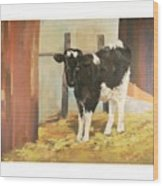 Holstein Calf Wood Print