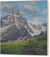 Holy Cross Wilderness Wood Print