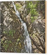 Holy Jim Falls Wood Print
