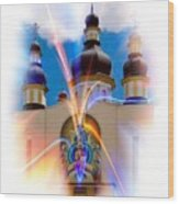 Holy Trinity Cathedral  Wood Print