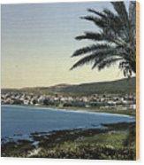 Holyland - Mount Carmel Haifa Wood Print