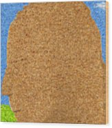 Homage To Seurat In Carpet Wood Print by Andy  Mercer