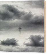Homage To Stieglitz #3 Jellyfish Wood Print
