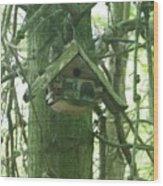 Home In The Heartland Wood Print