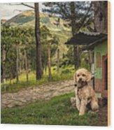 Home Owner Wood Print